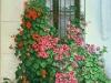 La ventana (Tabarca)